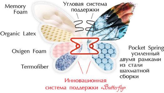 butterfly-1_800_web